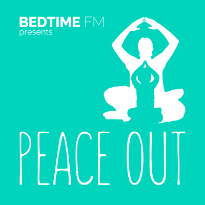 Peace Out 2017 Art Sticker
